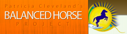 The Balanced Horse Project